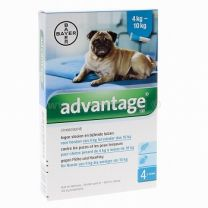 Advantage 100 Hond ( 4 - 10 kg ) 4 x 1,0 ml pipetten