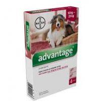 Advantage 250 Hond ( 10 - 25 kg ) 4 x 2,5 ml pipetten   LEVERTIJD WEEK 21