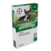 Advantage 40 Hond (< 4 kg) 4 x 0,4 ml pipetten