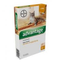 Advantage 40 Kat ( < 4 kg ) 4 x 0,4 ml pipetten